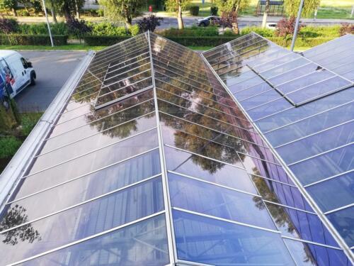Folia przeciwsłoneczna 3M Prestige 40 szklarnia zdjęcie od zewnątrz